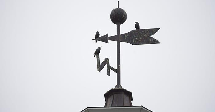stockweathervane4.jpg